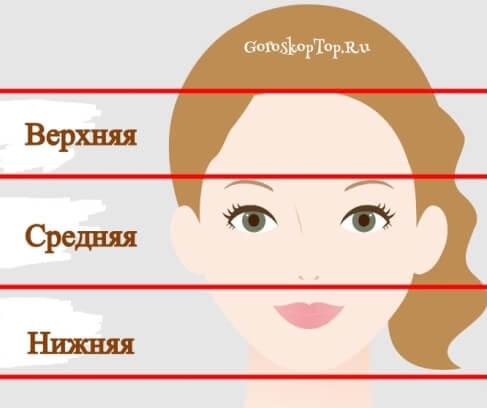 Физиогномика - Основные зоны лица